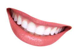 Teeth PNG Transparent Image