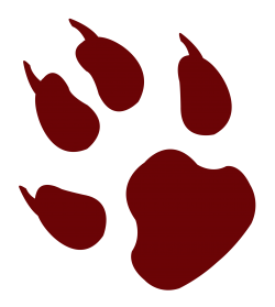 Animal Footprint PNG Transparent Image