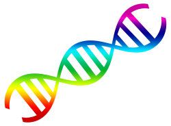 DNA Vector PNG Transparent Image