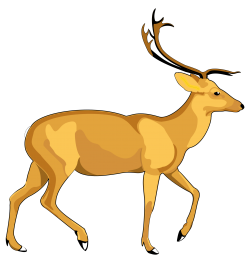 Deer Vector PNG Transparent Image
