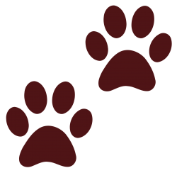 Dog Paw Print PNG Transparent Image