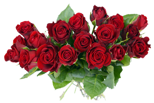 Rose Bouquet PNG Transparent Image
