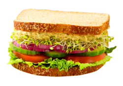 Sandwich PNG Transparent Image