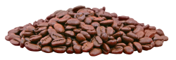 Coffee Beans PNG Transparent Image