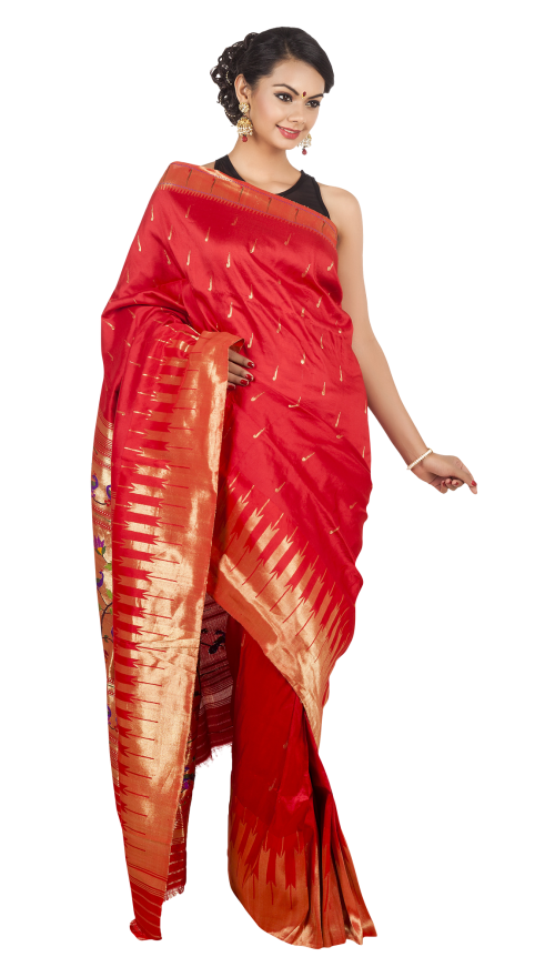 Wedding Saree PNG Transparent Image